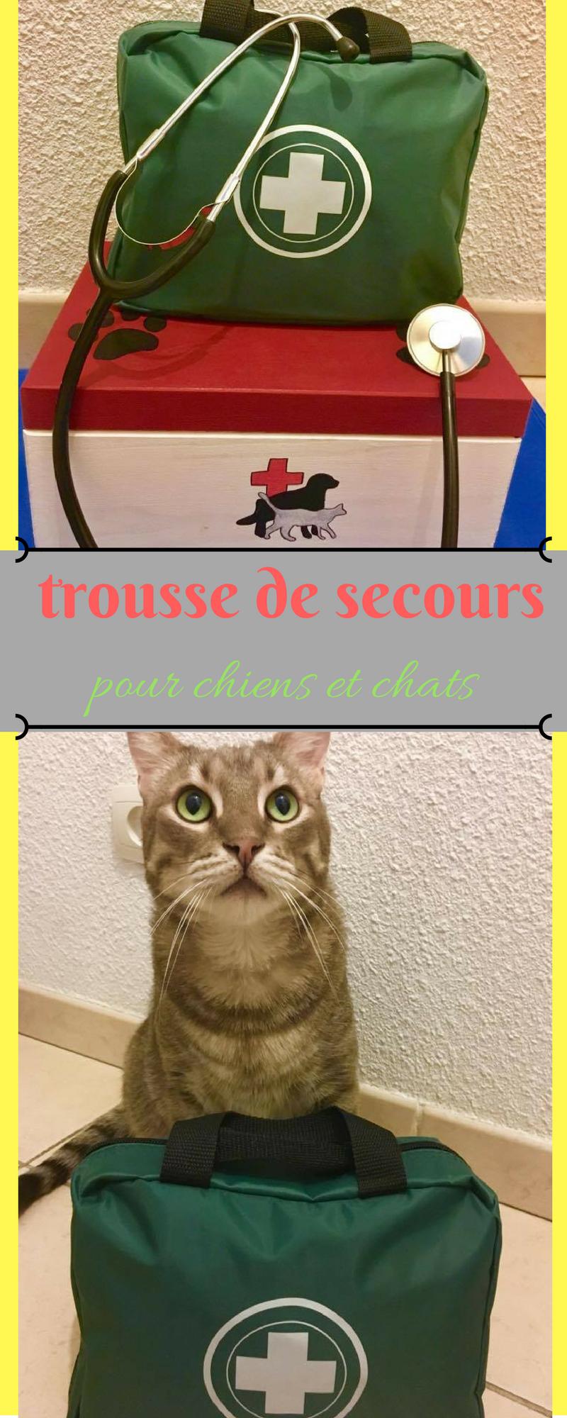 mode d'emploi pour composer sa trousse de secours pour chien et chat + en bonus la pharmacie naturelle