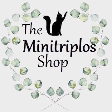 interview les Minitriplos des jouets pour chat made in france et fait-mains / secrets d'entrepreneur