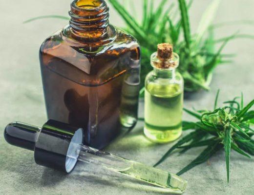quels sont les effets de l'huile de cbd pour animaux ? quels sont les bienfaits de l huile de cbd pour animaux ? Comment fonctionne l huile de cbd pour animaux ? qu est ce que le chanvre thérapeutique pour animaux ? pourquoi utiliser du cannabis médical pour animaux ? quelle est la différence entre le cbd et le thc ?