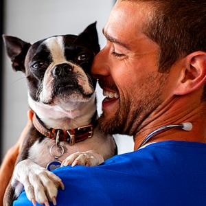 Tout savoir sur la SDMA du chien, ce dépistage précoce et précis de la fonction rénale. Pourquoi faire doser la sdma de son chien ? Quel est l'intérêt de la sdma ? Pourquoi est elle plus précise qu' une analyse sanguine classique ?