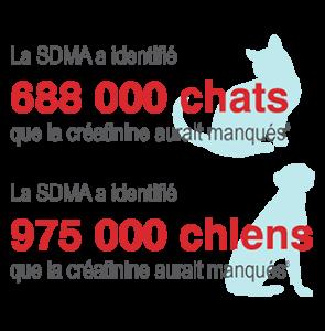 pourquoi faire un test sdma pour la fonction rénale de son chien ou de son chat ?